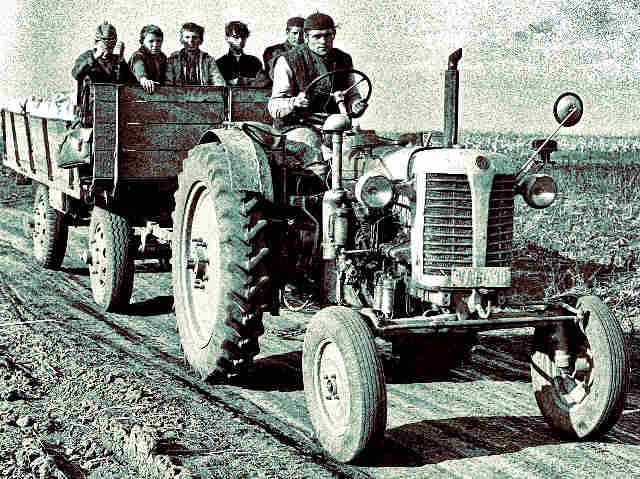 traktor-mezogazdasag