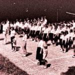 Kalandpálya a porontyoknak: elképesztő mi várja a gyerekeket a nyári táborokban V.