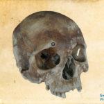 Digitalizálták a VIII. Henrik egykori zászlóshajójáról származó leleteket