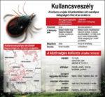 Van segítség a kullancsok elleni védekezésben
