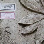 Új applikációval fedezhető fel a Fiumei úti sírkert